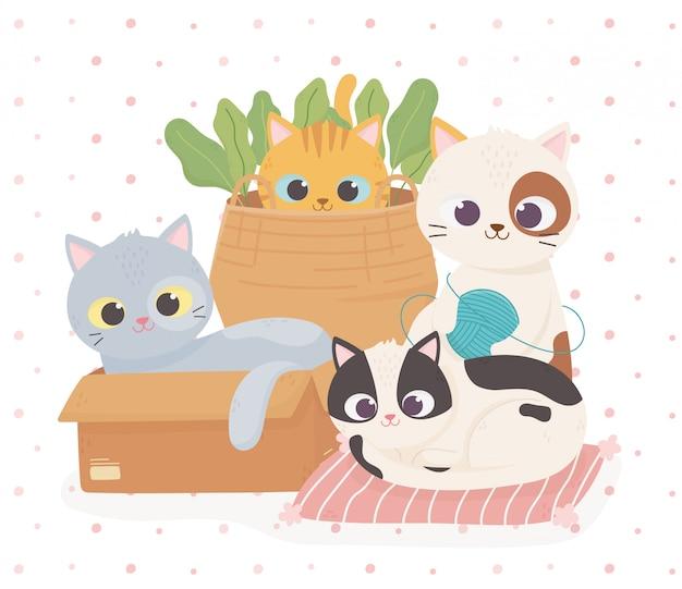 Mascotas gatos lindos en cojín de caja y canasta con bola de lana ilustración de dibujos animados