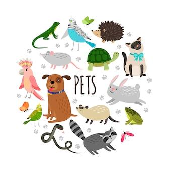 Mascotas populares alrededor de diseño de banner. animales de dibujos animados aislados sobre fondo blanco