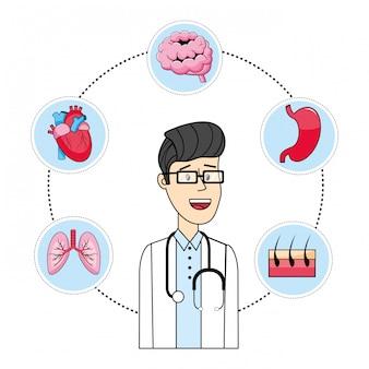 Médico de dibujos animados y órganos