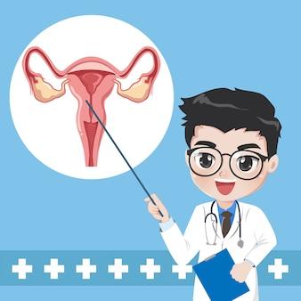 Médico enseña a dar el sistema de conocimiento del útero humano.