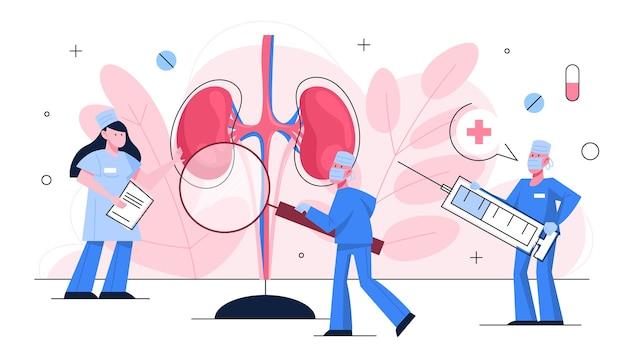 El médico hace un examen de riñón. idea de tratamiento médico. urología, órgano humano interno. cuerpo saludable.