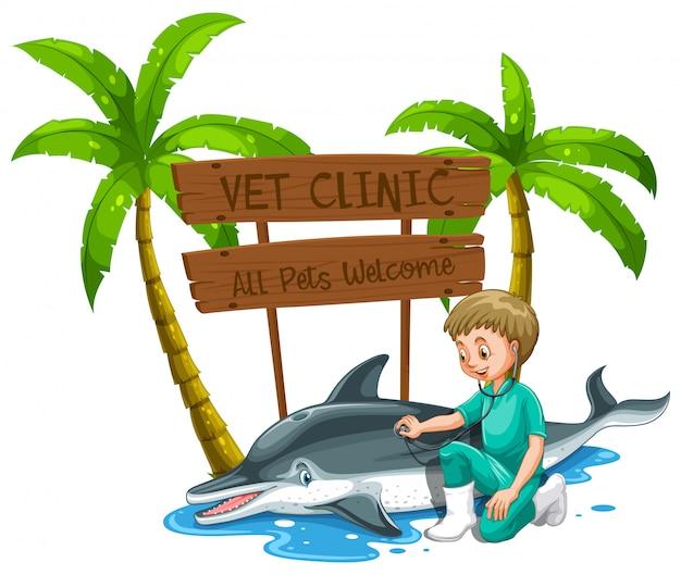 Un médico veterinario chequeo delfín en el zoológico