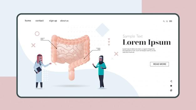 Médicos árabes que examinan el sistema digestivo del intestino humano consulta médica examen de inspección de órganos internos tratamiento concepto copia espacio horizontal de longitud completa