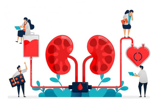 Los médicos realizan diálisis, tratamiento médico de insuficiencia renal, instalaciones médicas de hospitales y clínicas, purificación y limpieza de sangre.
