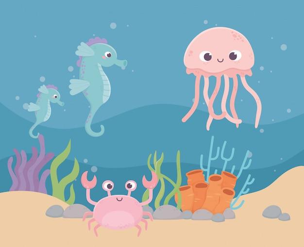 Medusas caballitos de mar cangrejo vida arrecife de coral dibujos animados bajo el mar