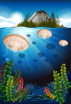 Medusas nadando bajo el mar