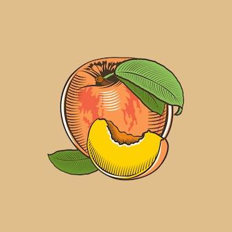 Melocotón en estilo vintage. ilustración vectorial de color