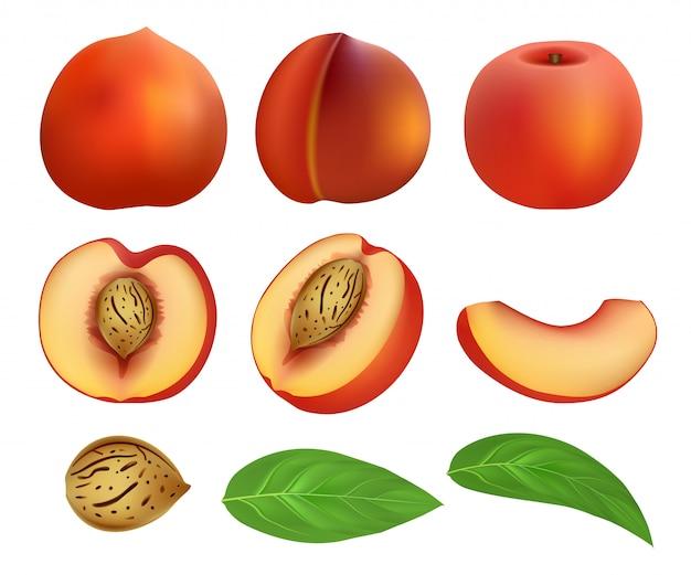 Melocotón rebanadas fruta hoja conjunto maqueta