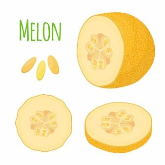 Melón amarillo maduro, fruta fresca.