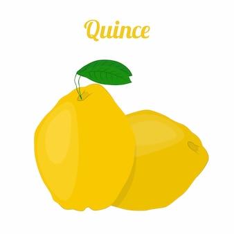 Membrillo saludable fruta