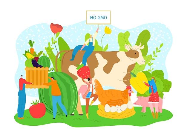 Mercado de agricultura de frutas y verduras de alimentos, productos agrícolas no transgénicos