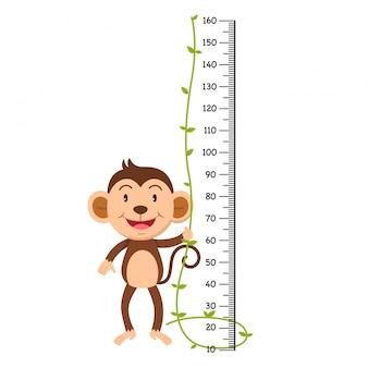 Metro de pared con ilustración de mono.