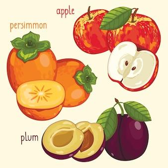 Mezcla de fruta fresca aislada, ilustración vectorial