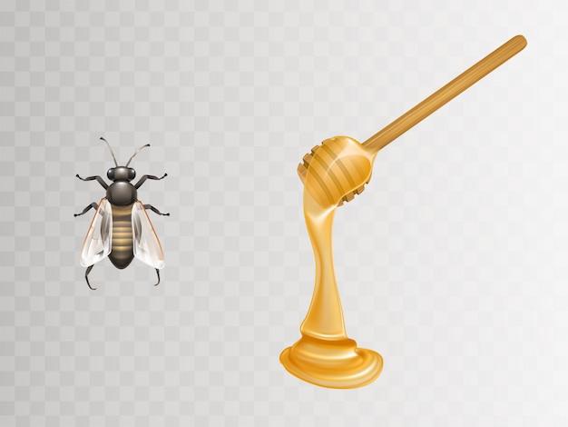 Miel fresca que fluye y gotea de cazo de madera y abeja