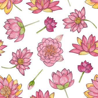 Modelo inconsútil floral con la mano de loto floreciente rosado magnífico dibujado en el fondo blanco.