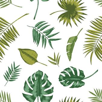 Modelo inconsútil hawaiano con follaje tropical sobre fondo blanco. telón de fondo natural con hojas verdes de plantas o árboles exóticos de la selva. ilustración de verano para papel de regalo, papel tapiz.