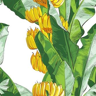 Modelo inconsútil de textura de la palma tropical de los plátanos del vector.