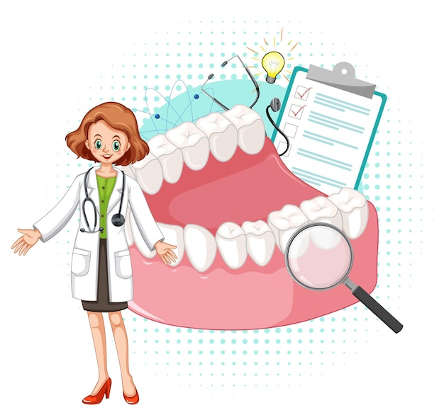 Modelo médico y dientes sobre fondo blanco.