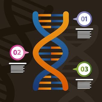 Molécula de adn e infografía genética.