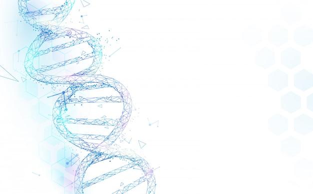 Las moléculas de la dna de wireframe estructuran la malla en el fondo blanco. concepto de ciencia y tecnología