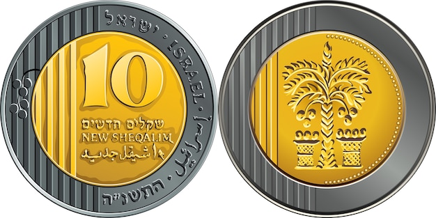 Moneda de un shekel de dinero de plata israelí