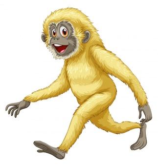 Un mono amarillo