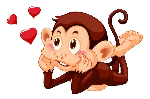 Un mono encantador en el fondo blanco