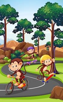 Mono jugando al deporte extremo