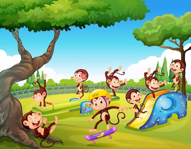 Mono jugando en el patio