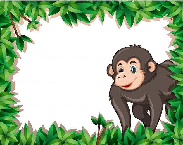 Mono en marco nayure