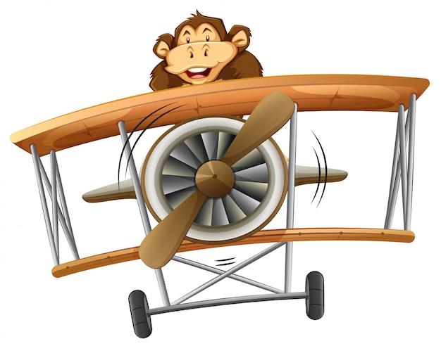 Un mono montado en un avión clásico.