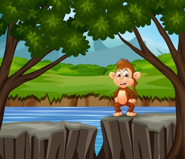 Un mono parado en el acantilado
