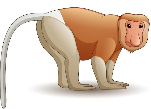 Mono de probóscide de dibujos animados