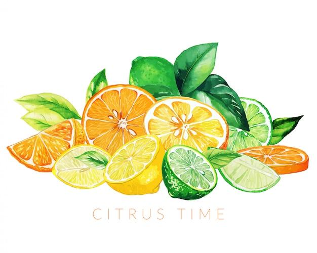 Montón de frutas mixtas, dibujado a mano ilustración acuarela