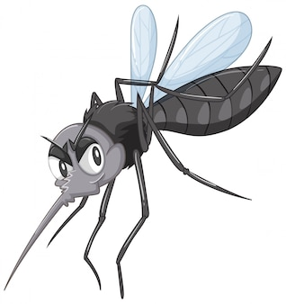 Mosquito salvaje negro