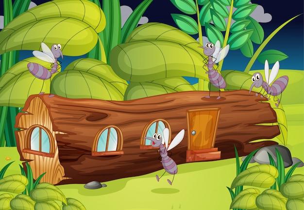 Mosquitos y una casa de madera