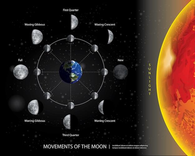 Movimientos de la luna 8 fases lunares ilustración vectorial realista