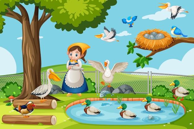 Muchas aves en la escena del parque natural con niña jardinera.