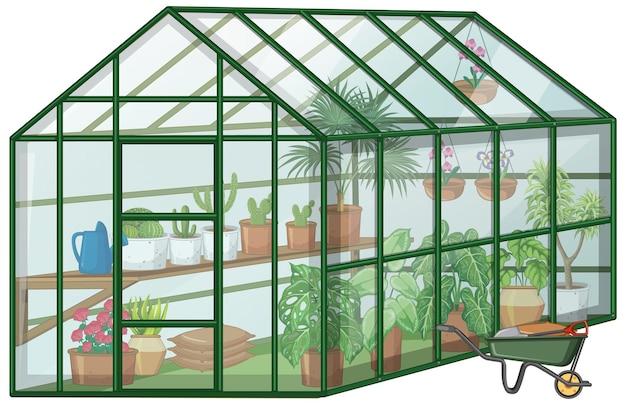Muchas plantas en invernadero con pared de vidrio y carretilla sobre fondo blanco.