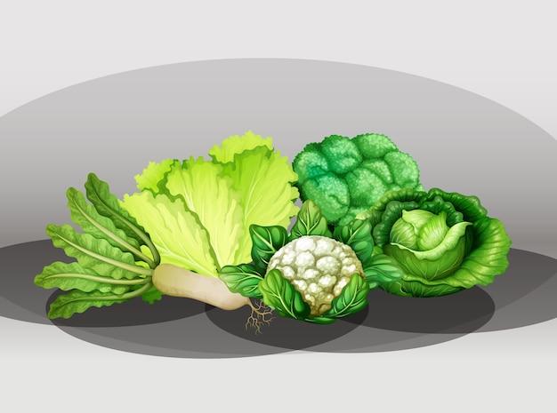 Muchas verduras diferentes en un grupo.