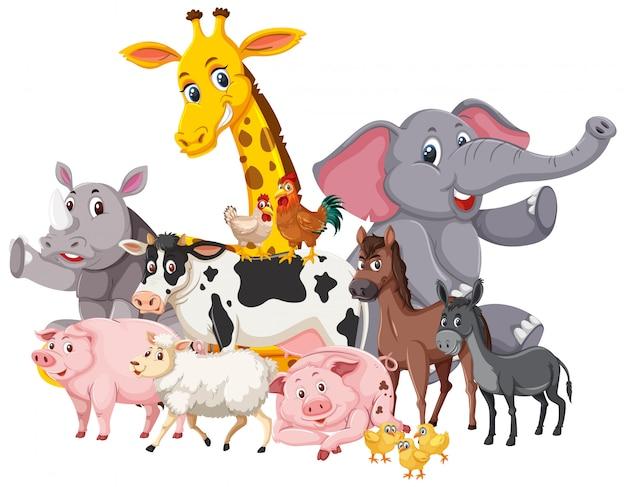 Muchos animales salvajes y animales de granja.