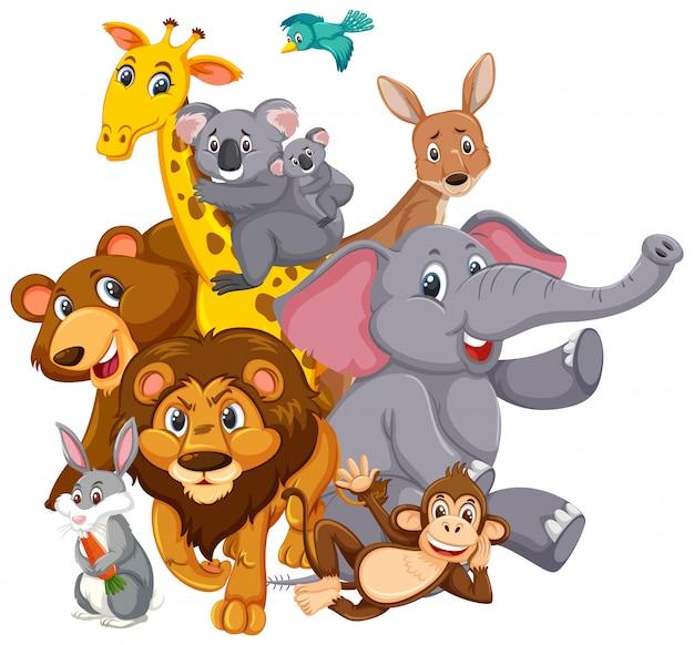 Muchos animales salvajes con cara feliz en blanco