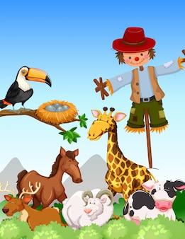 Muchos animales salvajes y espantapájaros en el campo.