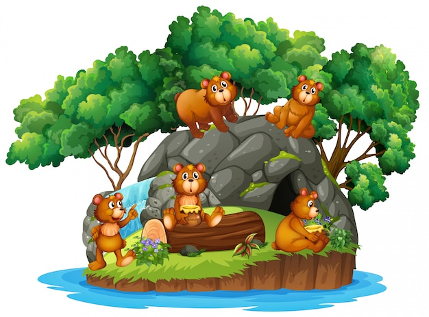 Muchos osos en la isla