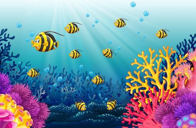 Muchos peces bajo el mar