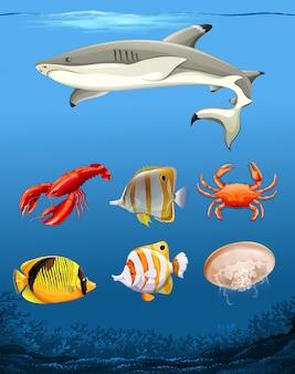 Muchos peces tema bajo el agua