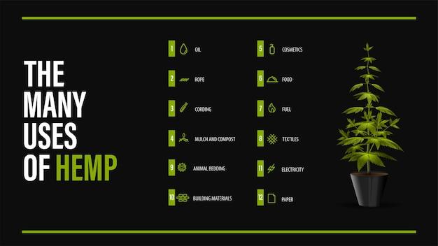 Los muchos usos del cáñamo, cartel negro con greenbush de la planta de cannabis e infografía de usos del cannabis