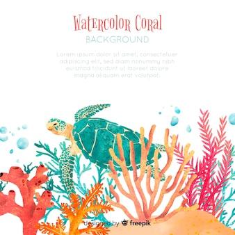 Muestra fondo acuarela coral