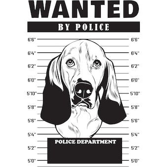 Mugshot de basset hound dog sosteniendo pancarta tras las rejas