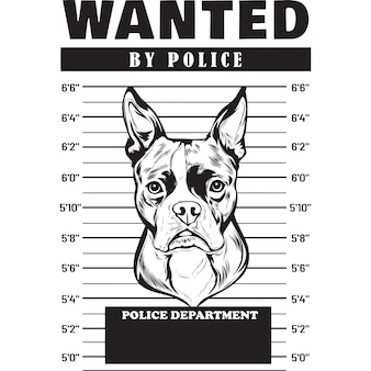 Mugshot de boston terrier dog sosteniendo la pancarta tras las rejas